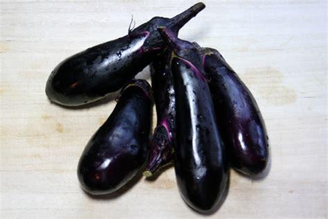 Terong Putih Bulat White Eggplant by 7 Cara Memasak Terong Ungu Yang Enak Dan Lezat Sahabat