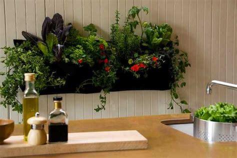 giardini verticali  interni idee green