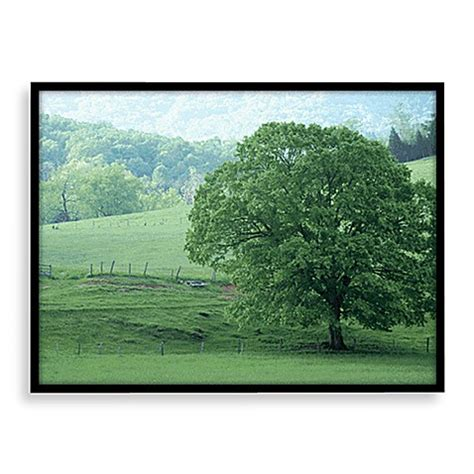 standesamt andernach change of seasons visual wall art in 3d bed bath beyond