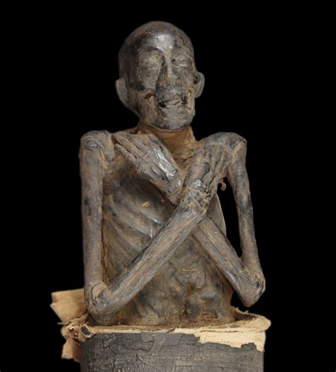 by mummy when this 3 000 year old mummy finally got her checkup