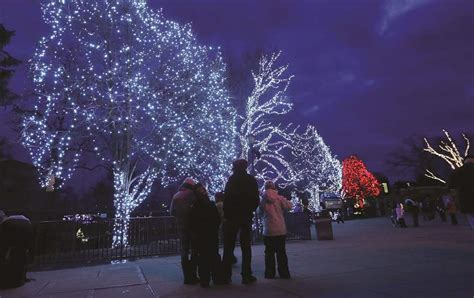 lights to be bright at toledo zoo the blade