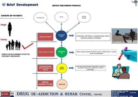 Rehab Detox Process by Thesis Rehab And Detox