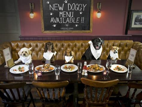 just for dogs bone appetit restaurant launches menu just for dogs