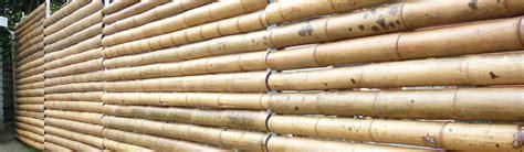 Fabriquer Des Objets En Bambou by Vente De Bambous 224 Planter En Belgique