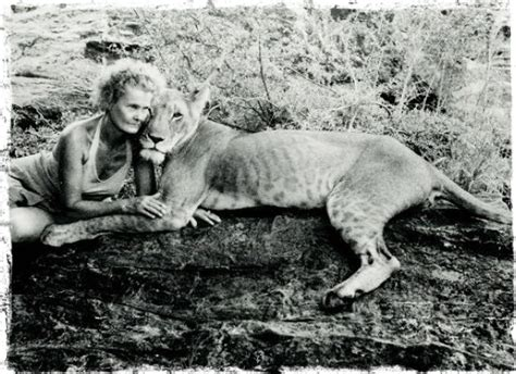 film elsa the lioness lion tales at joy s c elsa s kopje kenya classic