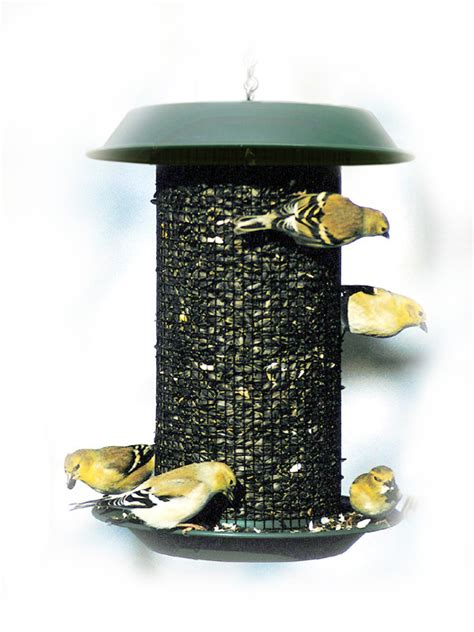 magnum black oil sunflower bird feeder woodlink bird