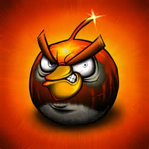 funny wounded angry birds pictures