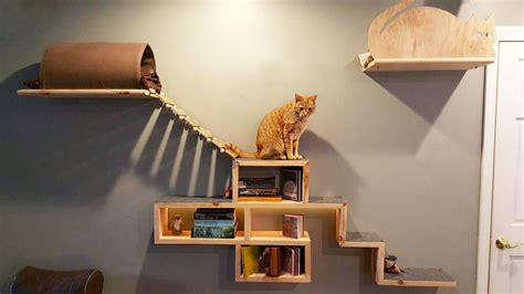 Commercial Building Plans by Diy Cat Tree Building Tips And Inspiration