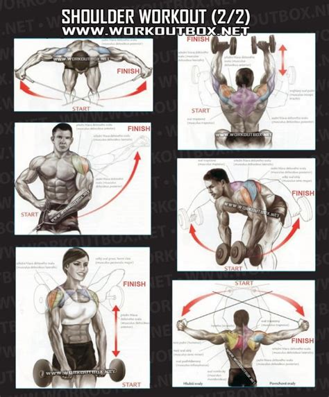 great shoulder workouts fitness