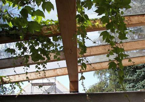 Terrassendach Plexiglas by Terrassendach Mit Plexiglas