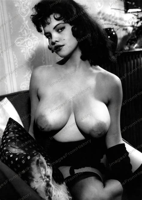 8x10 print sexy model pin up rosina revelle 1960 s nudes