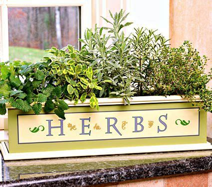 Window Sill Herbs Designs Herbs On The Windowsill White Flower Farm