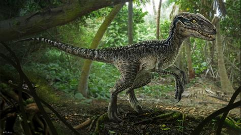 Jurassic World 5 artworks jurassic world page 5 jurassic world