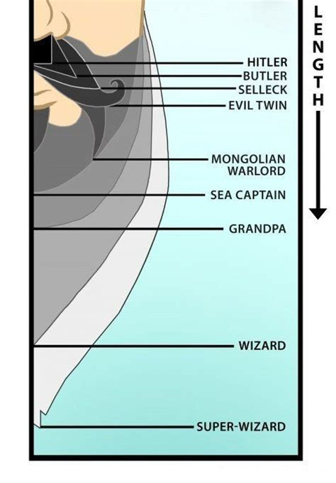 dreadlock growth chart 17 best images about awesome beards dreads on pinterest