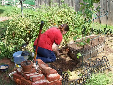 garden tips for fall fall gardening tips to continue saving money during the