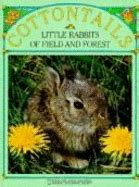 Best Seller Rabbit Top Bl4869 best selling cottontails books