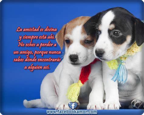 imagenes de perros animados con movimiento y frases imagenes bonitas de lindos perros con frases de amistad