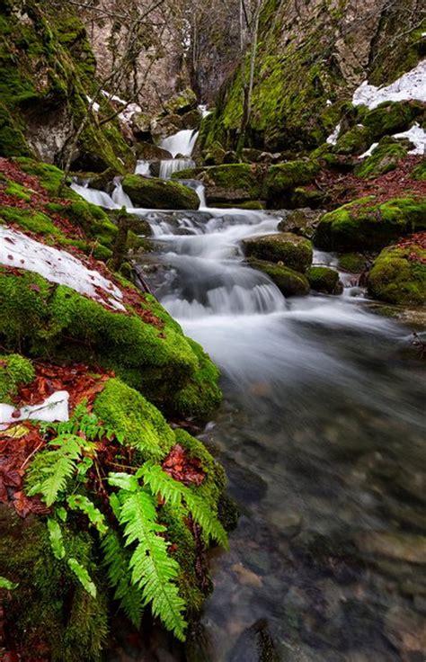 beautiful things in nature www pixshark com images beautiful pictures of nature www pixshark com images