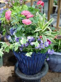 colorful containers for sun and shade ohio gardener enewsletter