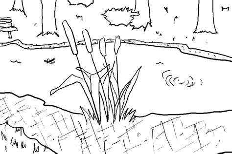 Pond Coloring Pages Coloring Pages Pond Coloring Page