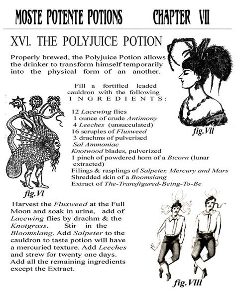 printable potion recipes polyjuice potion by lilpatty harry potter pinterest
