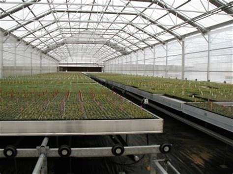 greenhouse benching linx greenhouse systems flood floor and flood bench