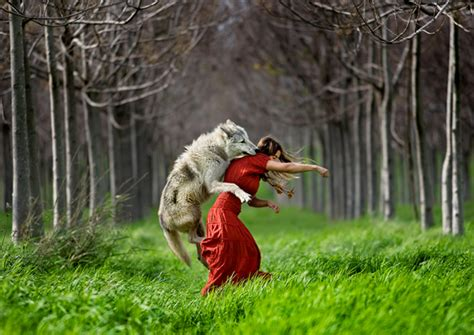 libro the big bad wolf how to be a good photographer an overview 121clicks com