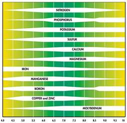 how does the ph of water or soil ph affect plant growth