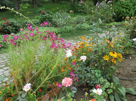 Flowers For My Garden Preparing Your Garden For Winter Overwintering Plants Putting The Garden To Bed The