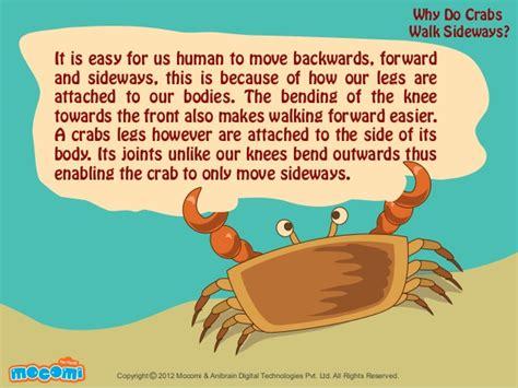 walking sideways why do crabs walk sideways mocomi