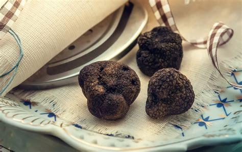 cuisiner la truffe pour no 235 l les recettes de no 235 l 224 la