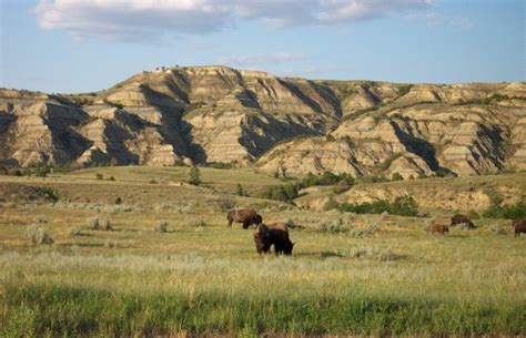 great plains wikitravel 4 regions of texas thinglink