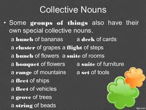 Collective Nouns Stairs by Collective Nouns