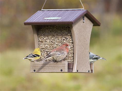 Enclosed Bird Feeder Seed And Suet Feeders Duncraft