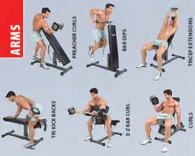 The best dumbbell only arm workout bodybuildertime com