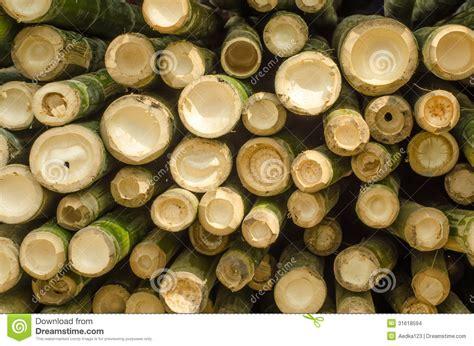 le bambou de coupe images stock image 31618594