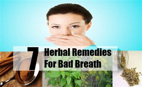 7 effective herbal remedies for bad breath how to treat