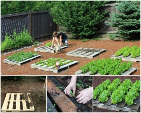 Garden Planters Diy by Wonderful Diy Pallet Garden Planter