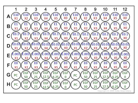 96 well plate template e 28 images 96 well plate
