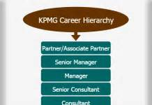 Kpmg Mba Careers Uk by Marketing Career Hierarchy