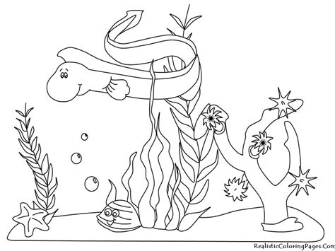 ocean animals coloring pages realistic coloring pages