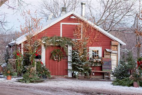 28 best stillwater christmas tree farm best places to