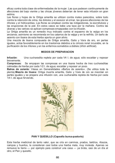 libro salud de la botica libro la salud de la botica del se 241 or