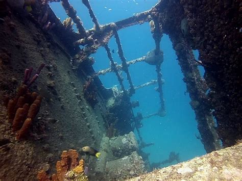 best catamaran in aruba aruba catamaran sail and antilla ship wreck snorkel