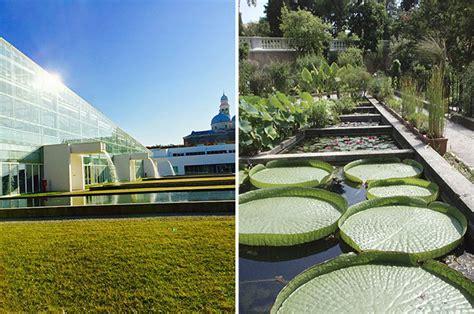 giardino botanico orari orto botanico di orari e prezzi per viaggiatori