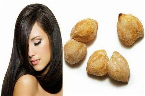 cara membuat minyak kemiri secara tradisional cara mengobati rambut rontok secara alami dengan minyak kemiri