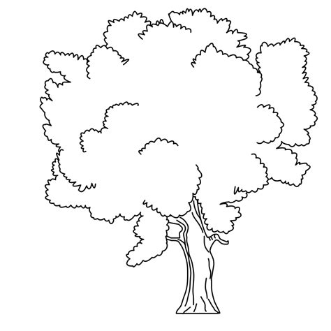 Tree Coloring Page Pdf | coloring pages coloring pages tree tree coloring page pdf