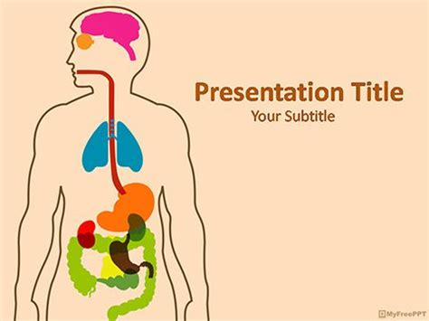 Anatomy Powerpoint Template Medical Template Pinterest Anatomy Ppt Templates Free