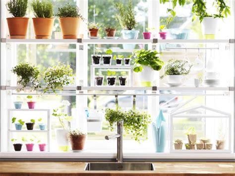 herb kitchen garden ikea kitchen herb garden jardin de joie pinterest