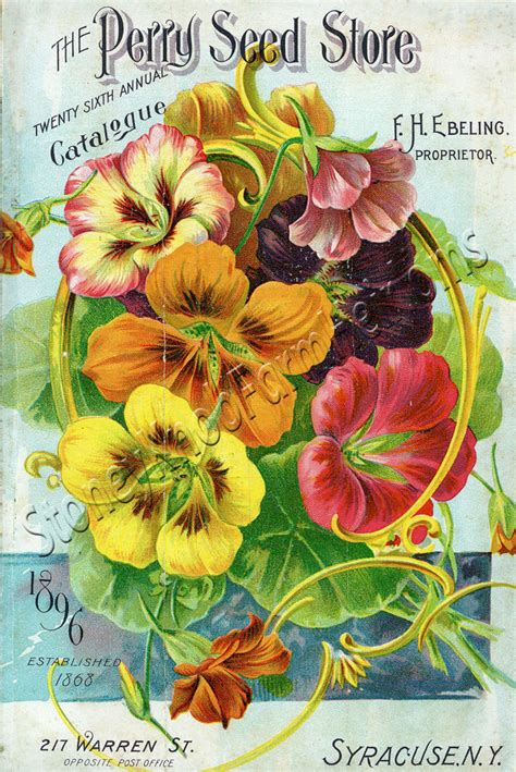 Flower Garden Catalogs Perry Seed 1896 Flower Seed Catalog Counted Cross Stitch